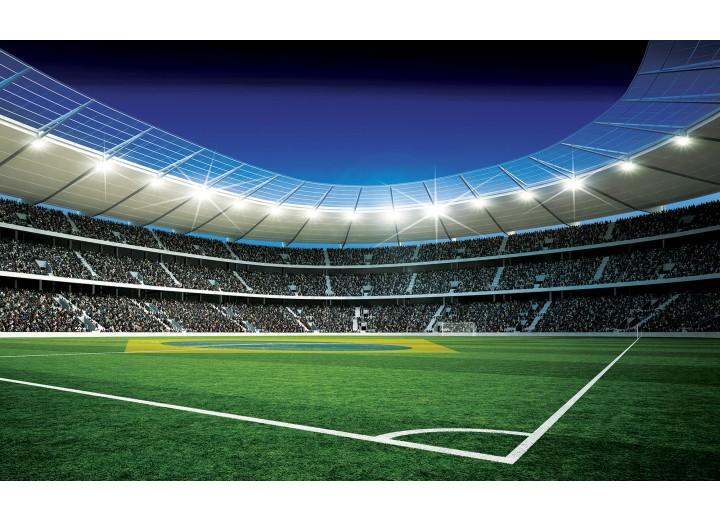 Fotobehang Vlies | Voetbal | Groen, Blauw | 254x184cm