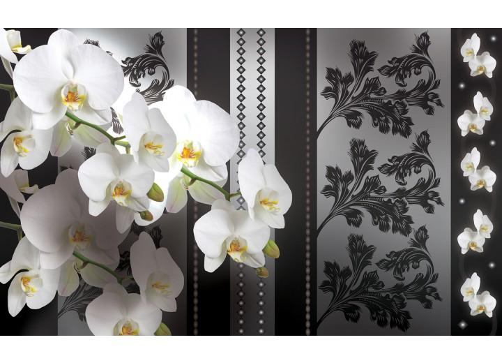 Fotobehang Vlies | Bloemen, Orchideeën | Grijs | 254x184cm