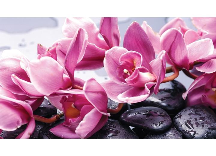 Fotobehang Vlies   Bloemen   Roze   254x184cm