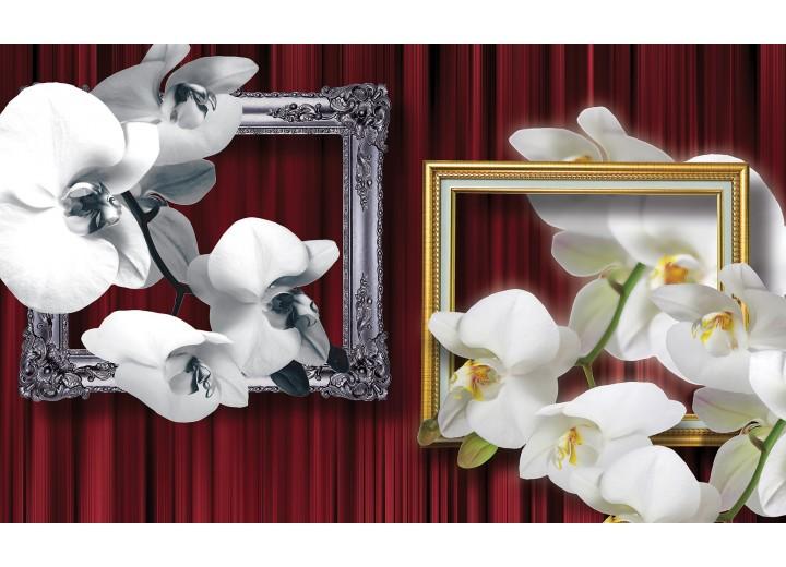 Fotobehang Vlies   Bloemen, Orchidee   Wit   254x184cm