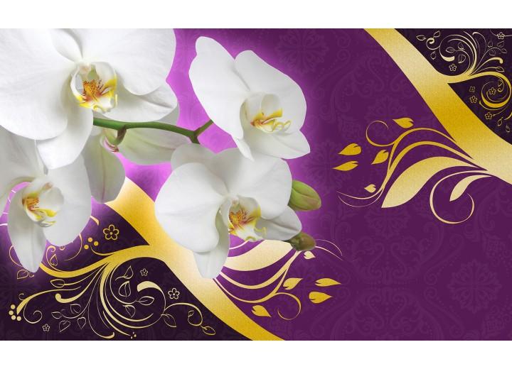 Fotobehang Vlies | Bloemen, Orchidee | Paars | 254x184cm