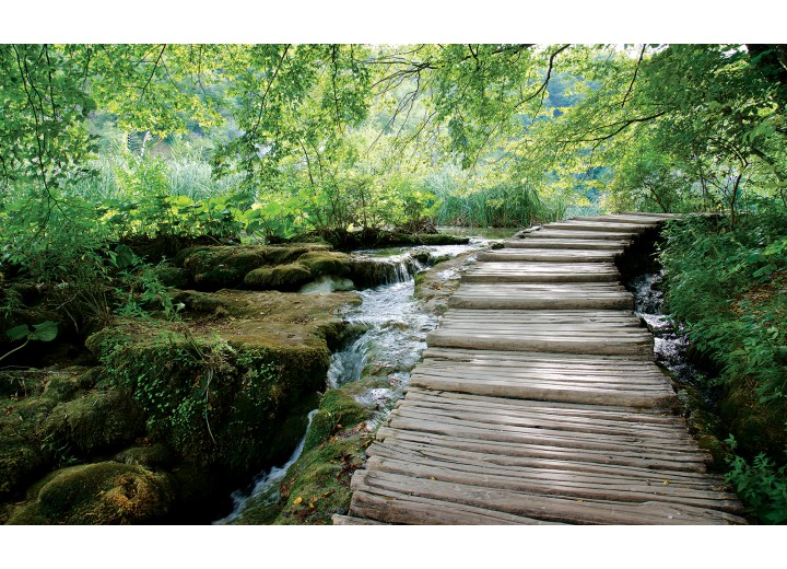 Fotobehang Vlies | Natuur | Groen | 254x184cm