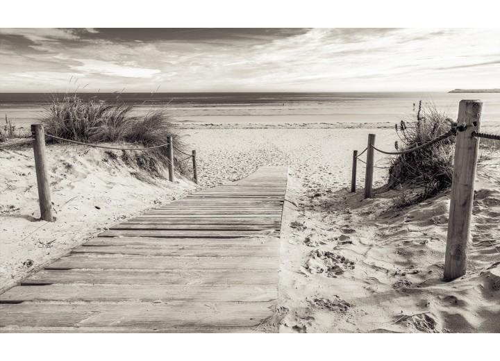 Fotobehang Vlies | Strand | Grijs | 254x184cm
