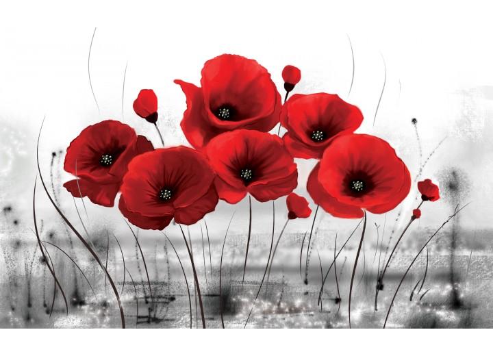 Fotobehang Vlies   Klaprozen, Bloemen   Rood   254x184cm