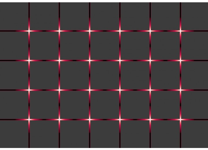 Fotobehang Vlies | Design | Grijs, Rood | 254x184cm