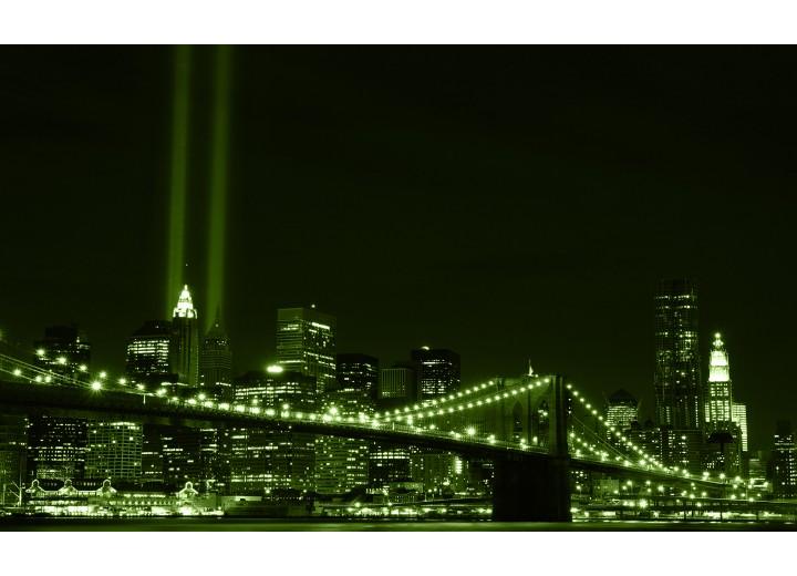 Fotobehang Vlies | New York | Groen | 254x184cm
