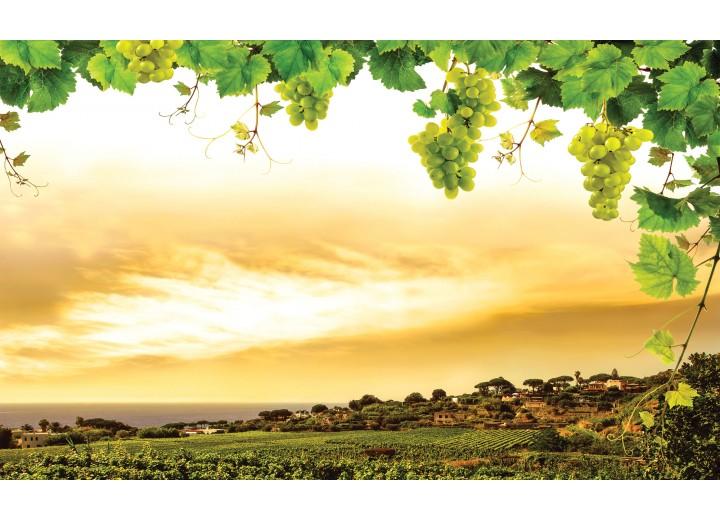Fotobehang Vlies | Natuur | Geel, Groen | 254x184cm