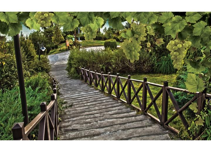 Fotobehang Vlies | Natuur, Brug | Groen | 254x184cm