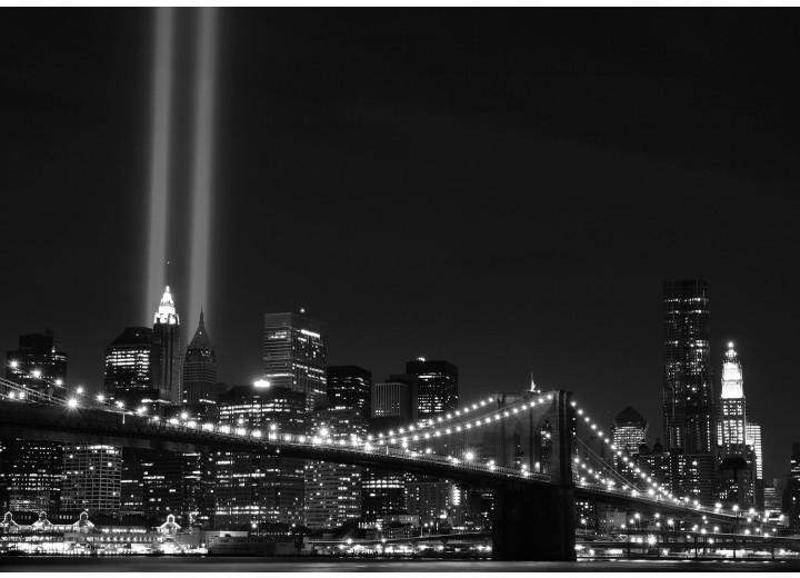 Fotobehang Vlies | New York | Zwart | 254x184cm