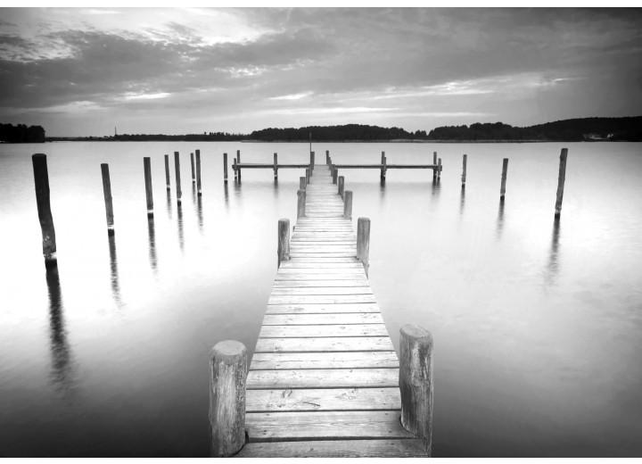 Fotobehang Vlies | Brug, Natuur | Grijs | 254x184cm