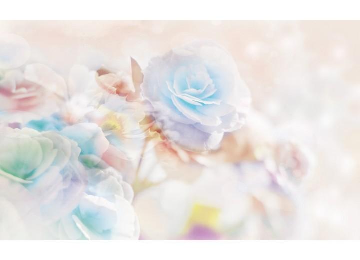 Fotobehang Vlies   Roos, Bloemen   Blauw   254x184cm