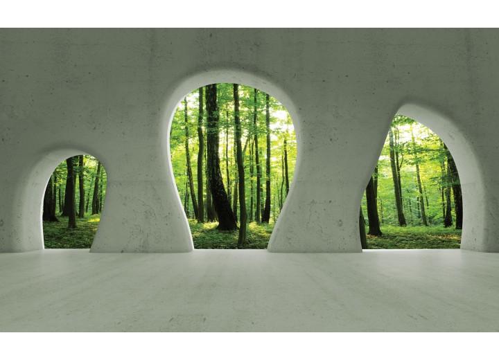 Fotobehang Vlies | Bos, Muur | Groen | 254x184cm