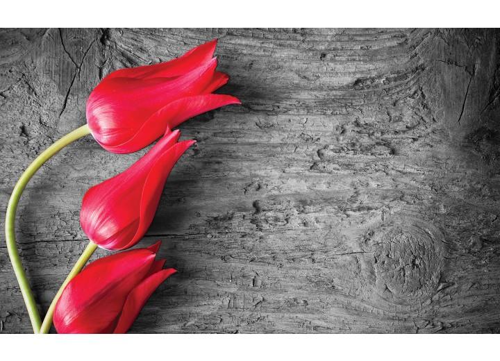 Fotobehang Vlies   Bloemen, Tulp   Rood   254x184cm