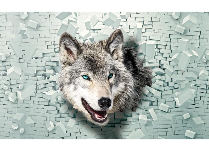 Fotobehang Vlies | Wolf, Muur | Grijs, Groen | 254x184cm