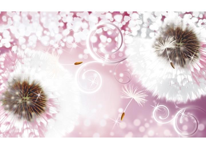 Fotobehang Vlies | Paardenbloem | Roze, Wit | 254x184cm