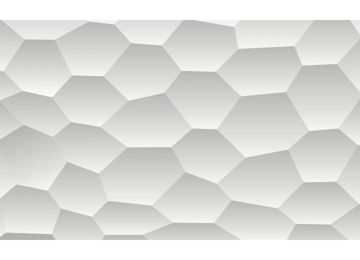 Fotobehang Vlies | Design | Wit, Grijs | 254x184cm