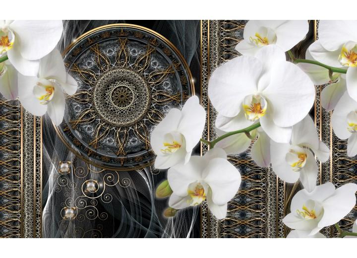 Fotobehang Vlies | Klassiek, Orchidee | Wit | 254x184cm