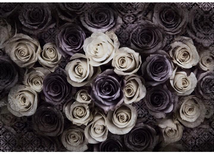 Fotobehang Vlies | Rozen, Bloemen | Crème | 254x184cm