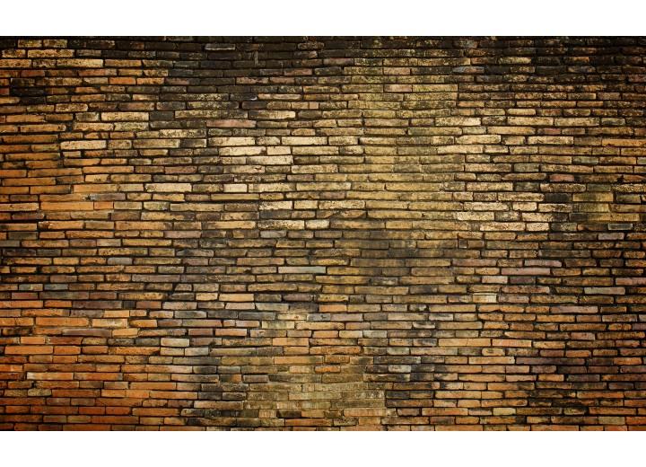 Fotobehang Vlies | Muur | Bruin | 254x184cm