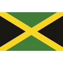 Fotobehang Papier Vlag | Groen, Zwart | 368x254cm