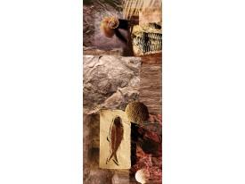 Deursticker Muursticker Schelpen | Bruin | 91x211cm