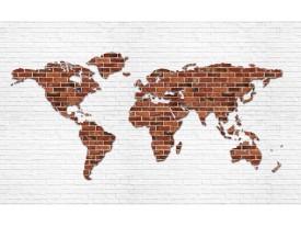 Fotobehang Wereldkaart, Muur | Bruin | 312x219cm