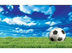 Fotobehang Papier Voetbalveld | Groen, Blauw | 254x184cm