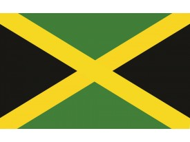 Fotobehang Vlag | Groen, Zwart | 104x70,5cm