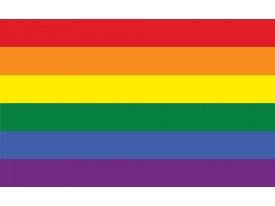 Fotobehang Vlag | Geel, Oranje | 104x70,5cm