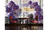 Fotobehang Vlies | Landelijk, Orchidee | Paars | 254x184cm