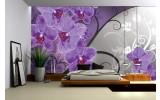 Fotobehang Vlies   Bloemen, Orchidee   Paars, Grijs   254x184cm