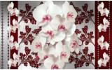 Fotobehang Vlies   Bloemen, Orchideeën   Wit, Grijs   254x184cm