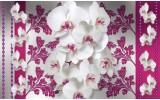 Fotobehang Vlies | Bloemen, Orchideeën | Roze, Wit | 254x184cm