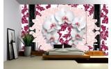 Fotobehang Vlies | Bloemen, Orchideeën | Wit | 254x184cm