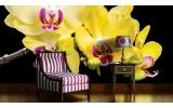 Fotobehang Vlies | Bloemen, Orchidee | Geel | 254x184cm