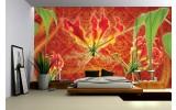 Fotobehang Vlies | Bloemen | Oranje, Rood | 254x184cm