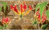 Fotobehang Vlies | Bloemen, Stenen | Groen, Bruin | 254x184cm