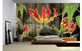 Fotobehang Vlies   Bloemen   Groen, Rood   254x184cm