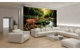 Fotobehang Vlies | Bos, Natuur | Bruin, Groen | 254x184cm
