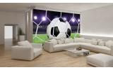 Fotobehang Vlies   Voetbal   Groen, Wit   254x184cm