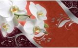 Fotobehang Vlies | Orchidee, Bloem | Wit | 254x184cm