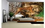 Fotobehang Vlies | Wilde Dieren | Bruin | 254x184cm