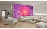 Fotobehang Vlies   Bloemen   Paars, Roze   254x184cm