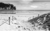 Fotobehang Vlies | Strand, Zee | Grijs | 254x184cm