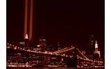 Fotobehang Vlies | New York | Bruin | 254x184cm