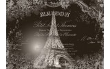 Fotobehang Vlies   Eiffeltoren, Parijs   Sepia   254x184cm