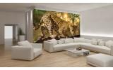 Fotobehang Vlies | Jaguar, Dieren | Geel | 254x184cm
