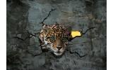 Fotobehang Vlies | 3D, Dieren | Grijs | 254x184cm