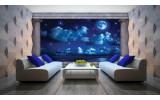 Fotobehang Vlies   Nacht, Maan   Blauw   254x184cm