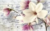 Fotobehang Vlies | Bloemen, Magnolia | Crème | 254x184cm
